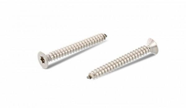 ISO14586 Senkkopf-Blechschrauben mit Innensechsrund (TX)